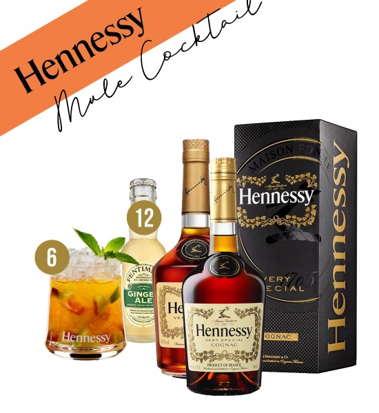 Party Box HENNESSY MULE COCKTAIL
