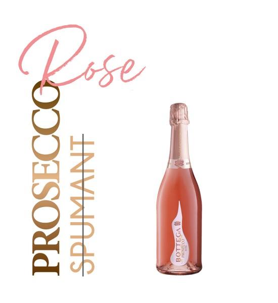 Bottega Il Vino dei Poeti Prosecco Rose Brut 0.2L